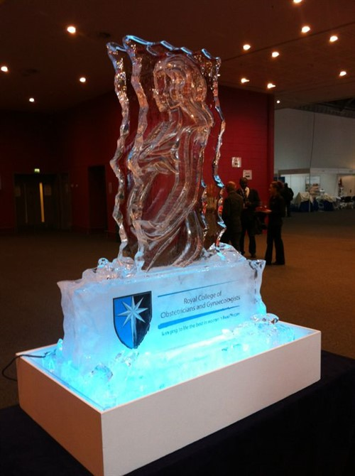 RCOG Ice Sculpture